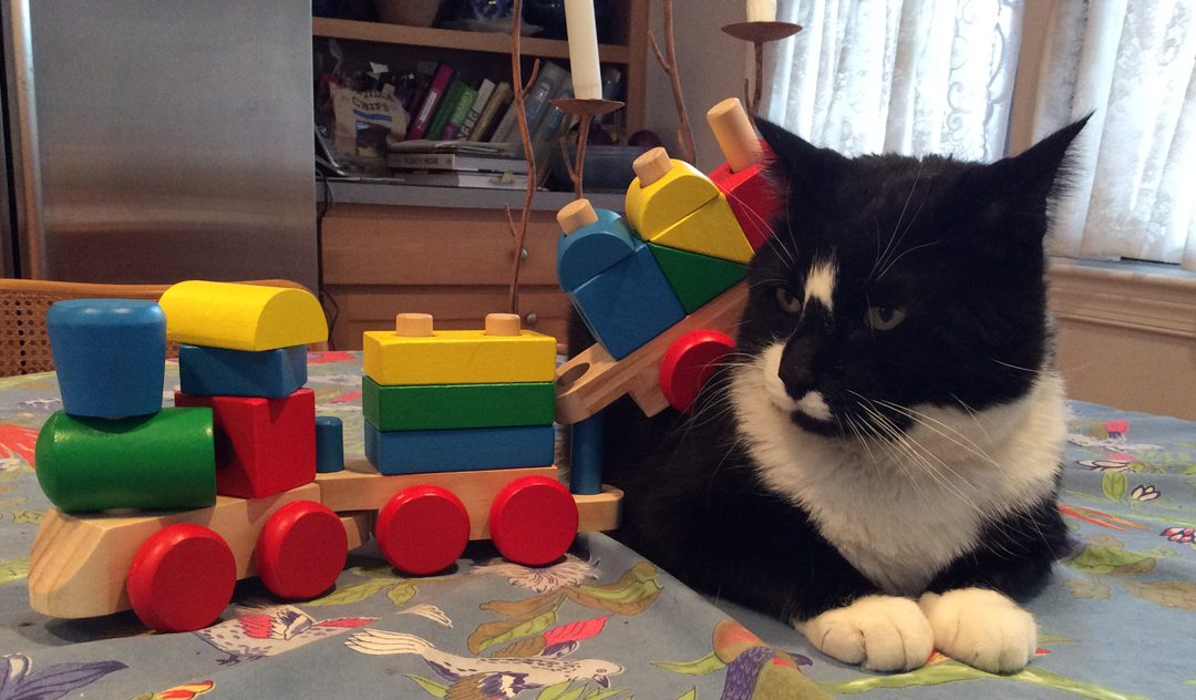 """Melissa & Doug Stacking Train"""