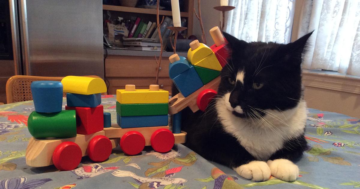 Teddy Boy with toy trains