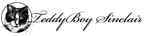 TeddyBoy Sinclair