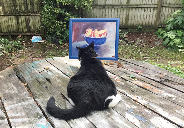 Cats, tuxedo cats, paintings, pears