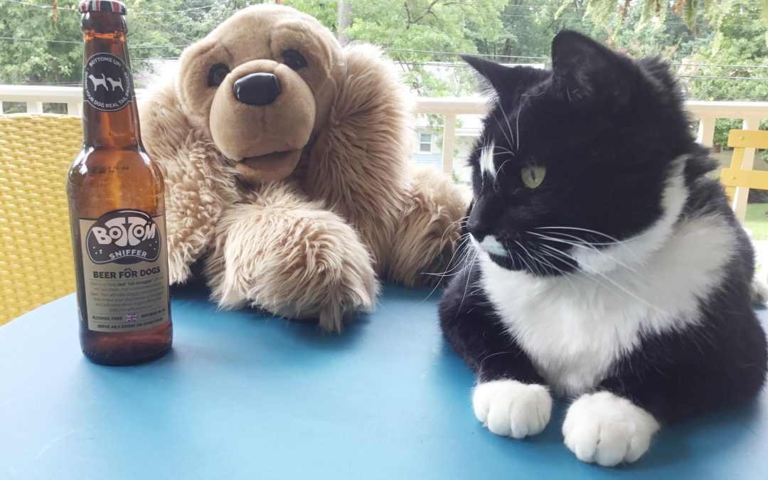 Never Drink Alone (Pet Beverage Review)